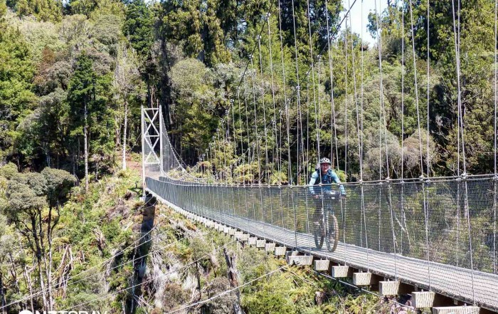 The massive suspension bridges on this trail were both stunning and daunting