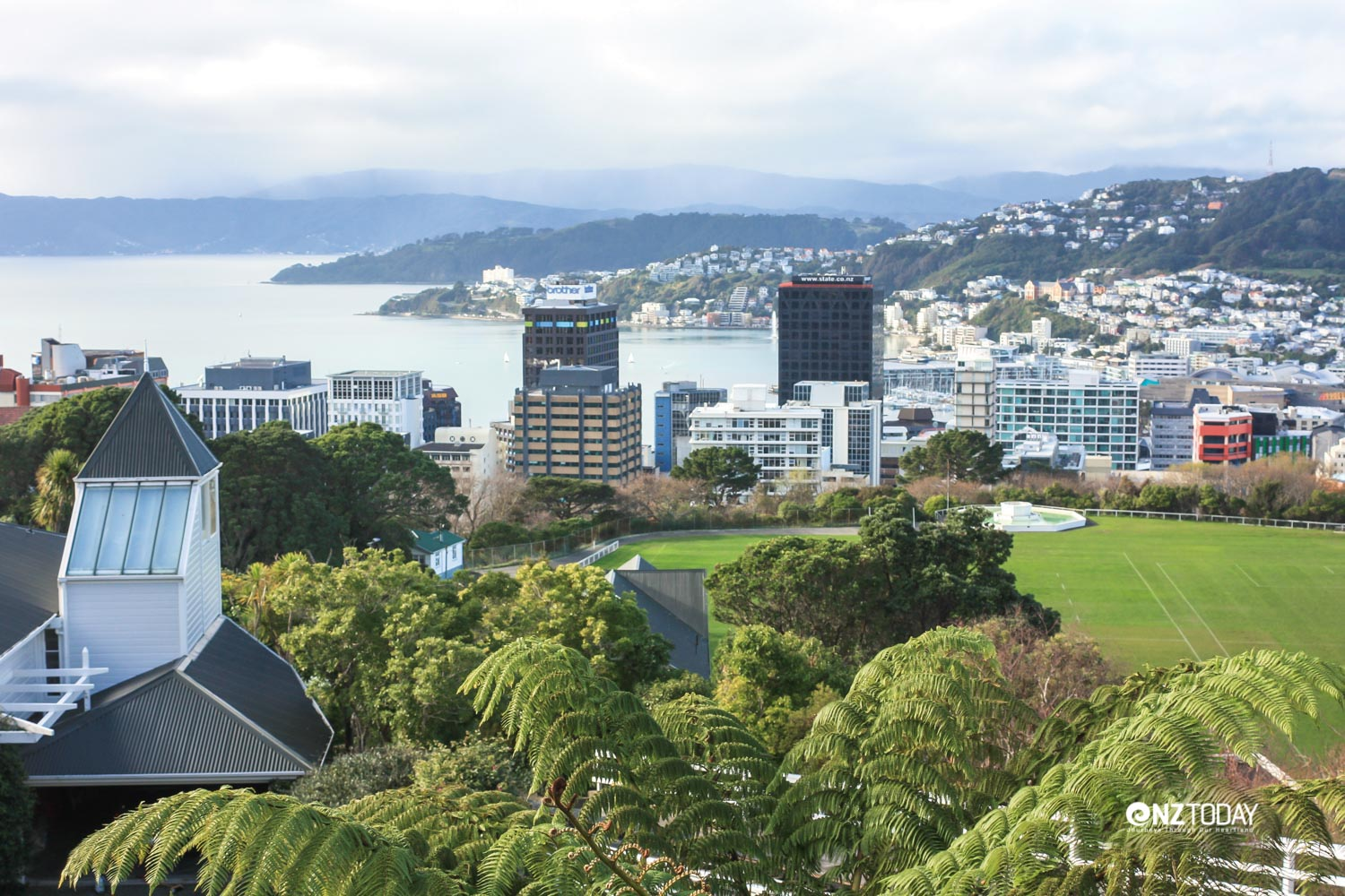 Expansive views of Wellington Harbour from the cable car are truly memorable