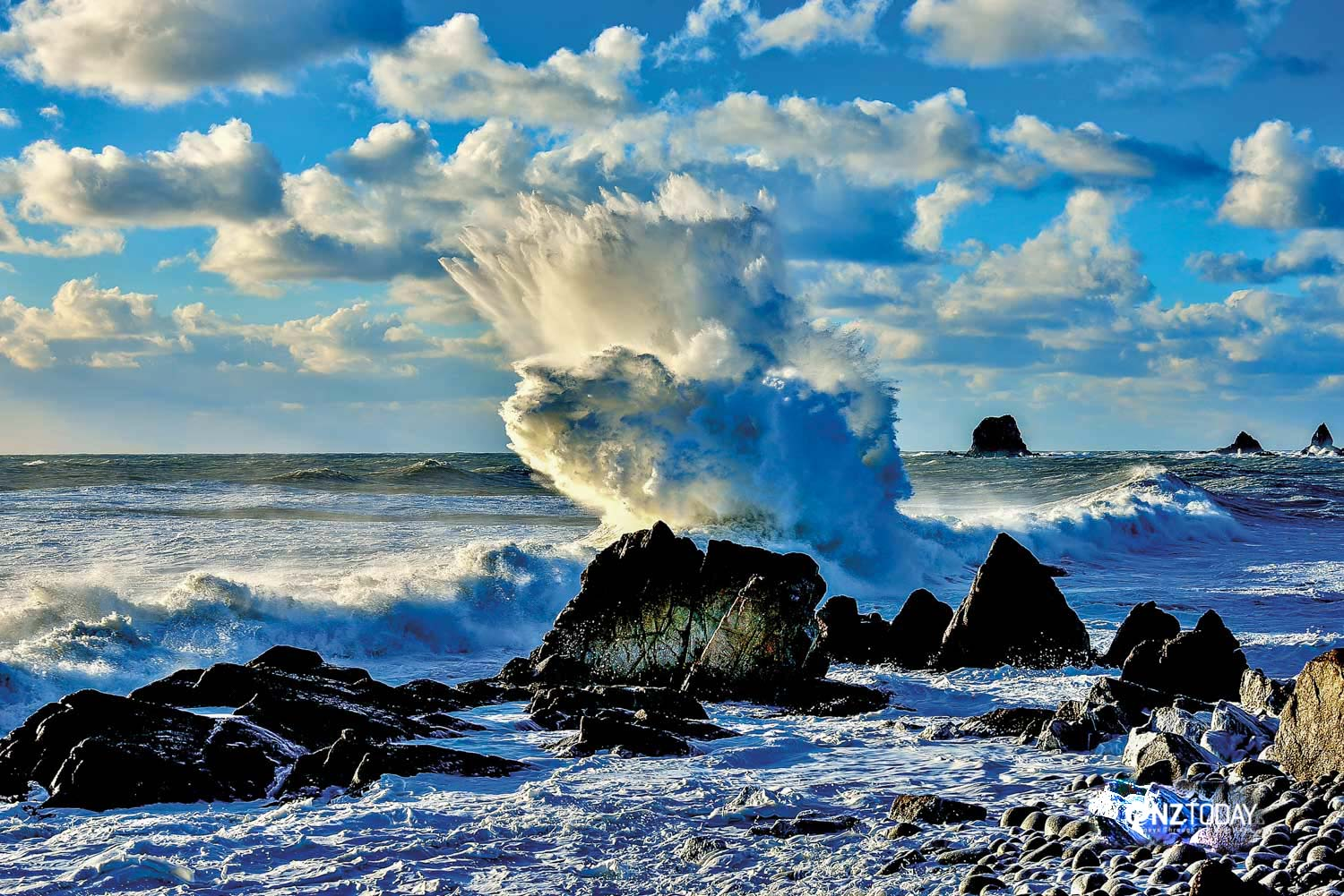 Cape Foulwind – named by Captain Cook – is where the Tasman Sea first hits New Zealand. Photo by Peter Coburn