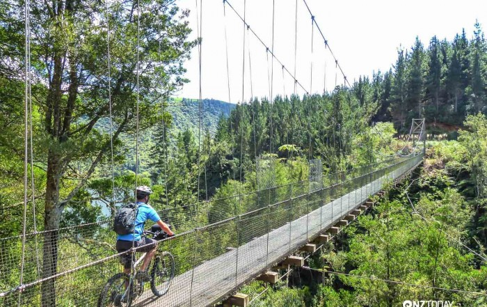 Mangarewa suspension bridge – a gem of a span over the creek far below