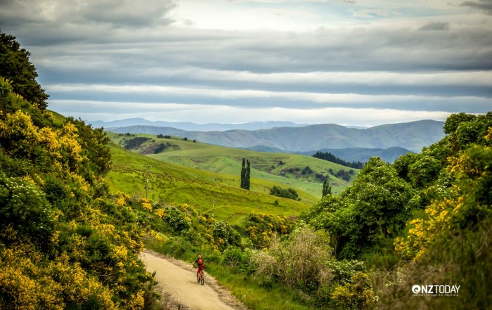 The blissful escape of countryside riding (credit – Tim Bardsley-Smith)