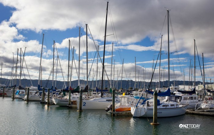 Seaview Marina has around 300 berths
