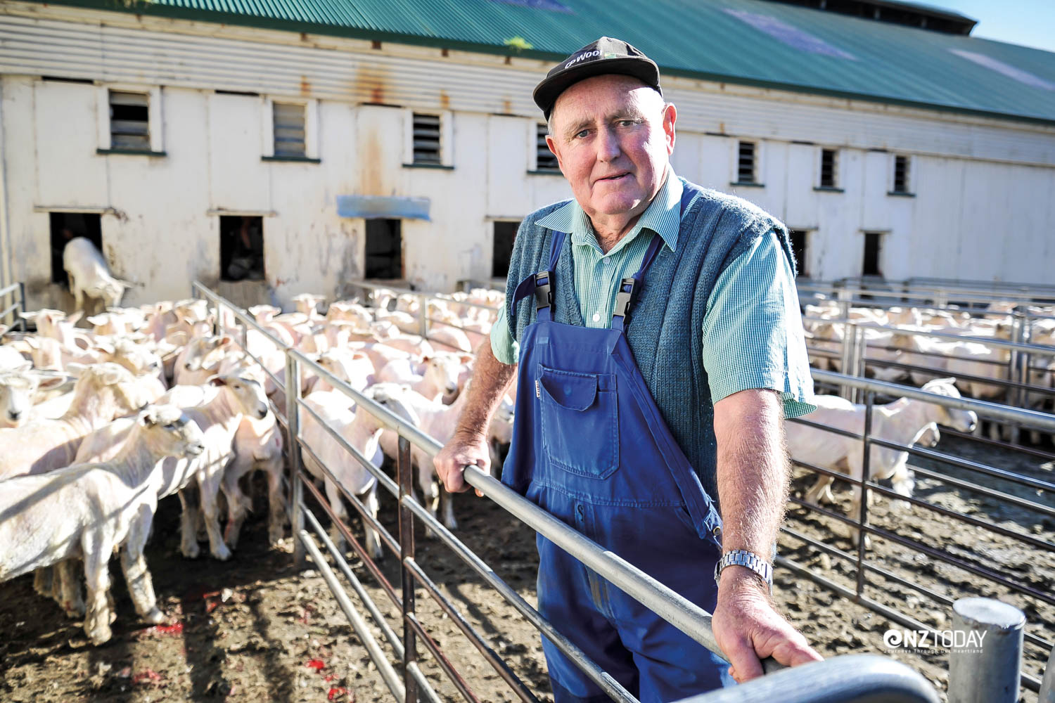 Wool consultant Ross Buscke outside the shearing shed