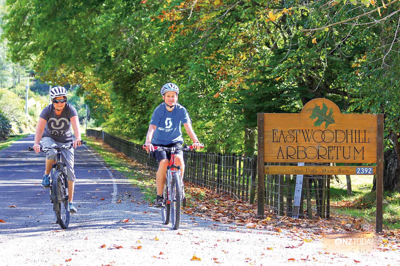 Eastwoodhill Arboretum. Photo Ray Sheldrake