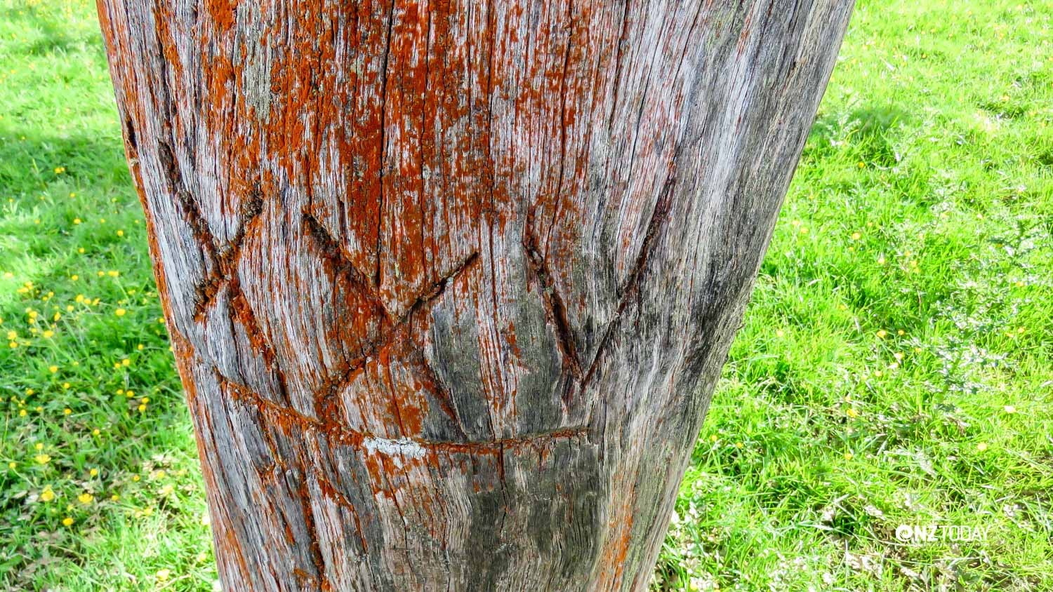 There are many construction markings on the timber