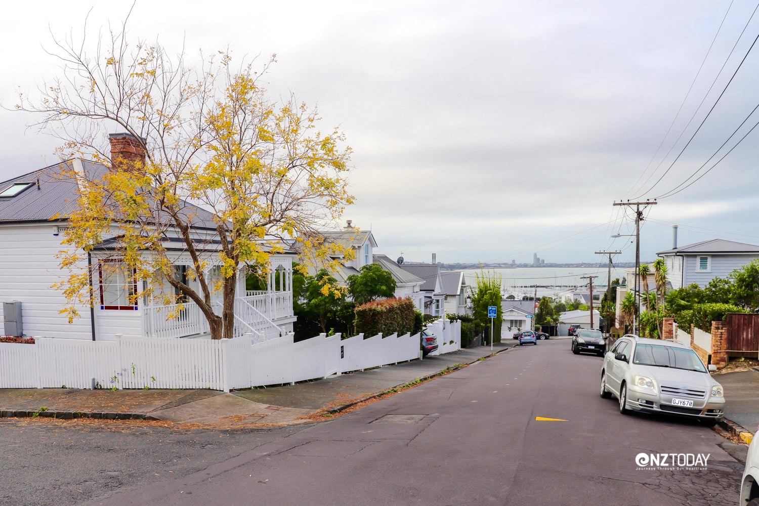 A quiet St Mary's Bay residential street where restored villas cost more than $2 million