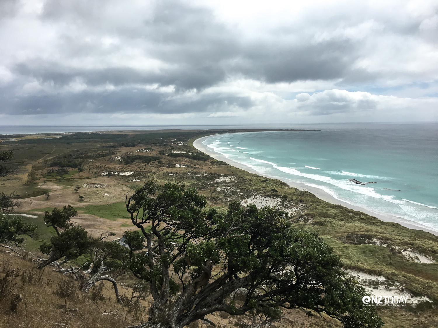 View of Tupuangi, situated along the point, looking from Maunganui where survivors of the village ran to safety – photo K-L Thomas GNS Science
