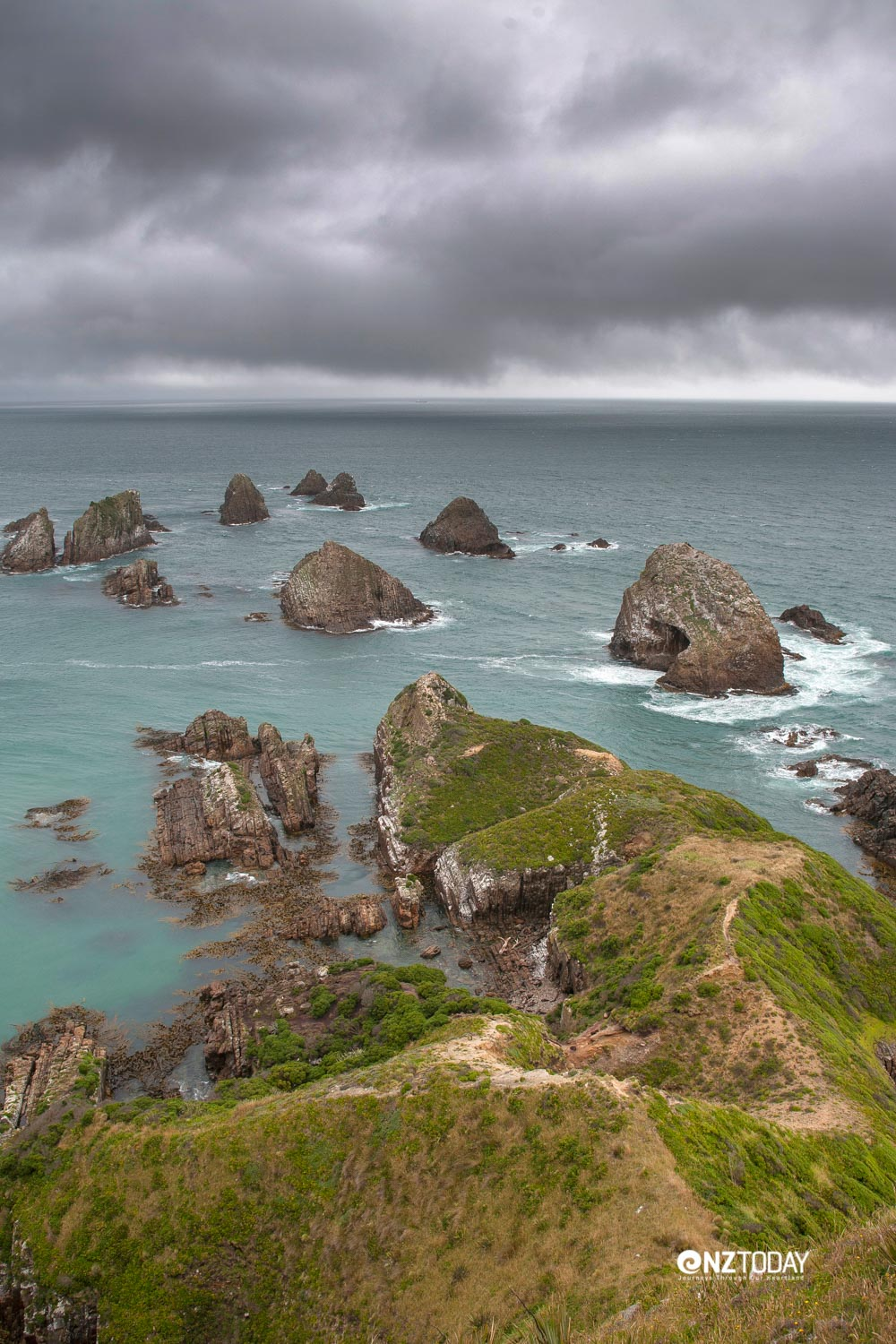 The wave-eroded rocks at Nugget Point are likened to the shape of gold nuggets