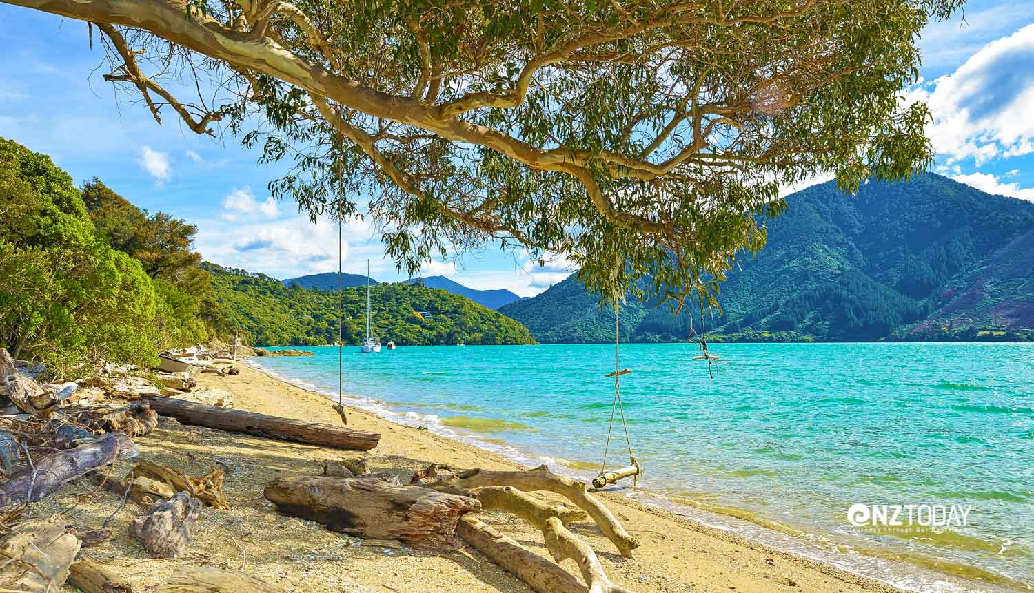 The Sounds are a relaxing place to unwind. Photo: Queen Charlotte Track Inc.