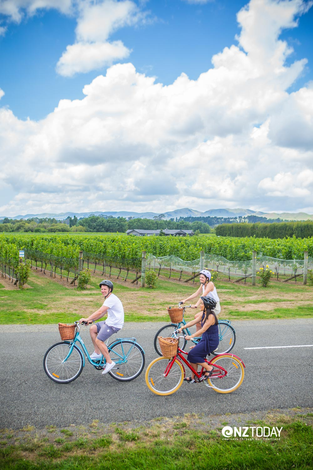 Cycling the vines Photo: Jeff McEwan