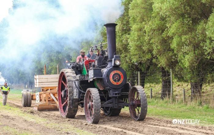 Grunt time! A traction engine gets down to it in the tractor pull at the Crank Up