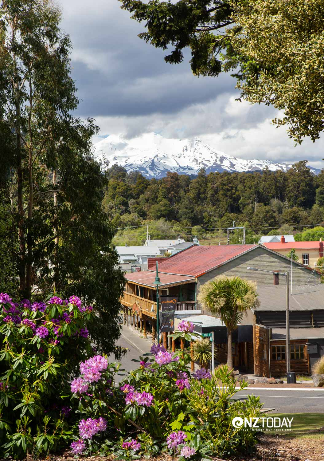 Just down from Aorangi Lodge is a view of the Junction and Mt Ruapehu